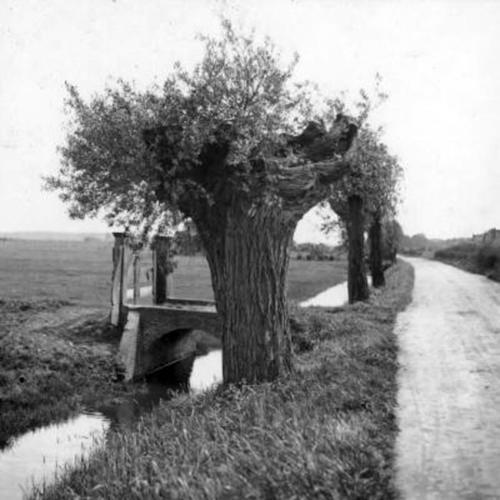 De Ezelsdijk in 1920