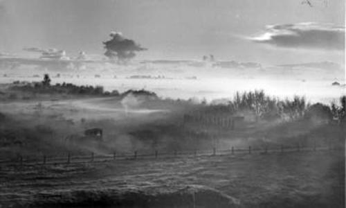 Ezelsdijk 1952
