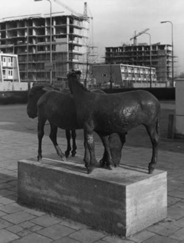 De drie ezelt in 1971